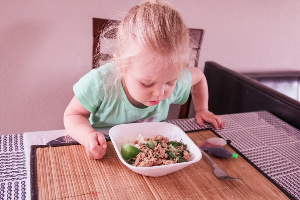 Hello Fresh Kid Friendly Meals